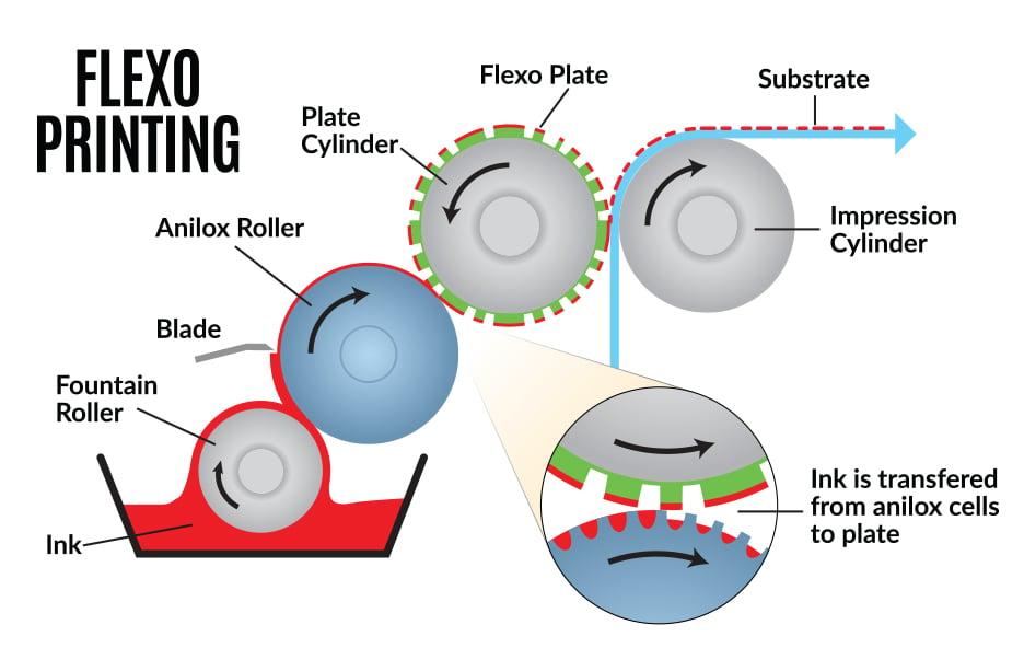 Flexo-printing-process-chart
