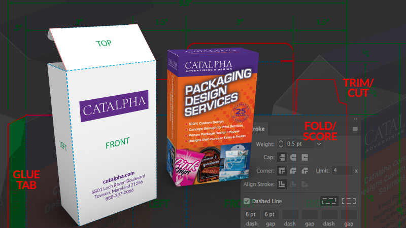 create-dieline-with-illustrator-feature-image