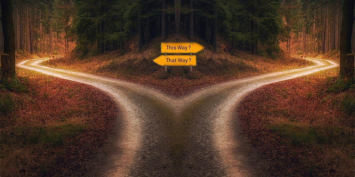 decision-which-path