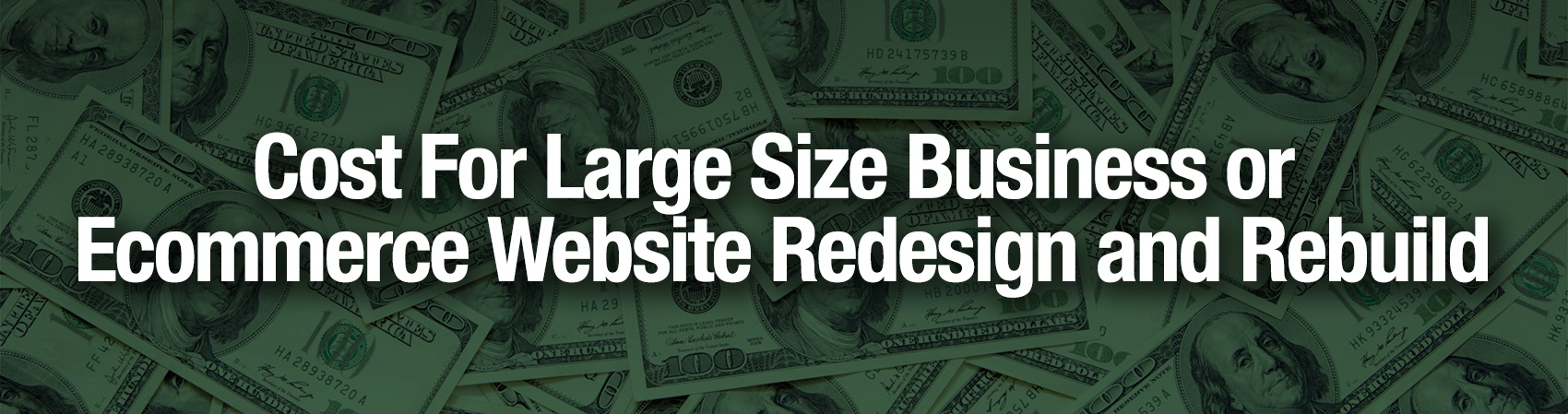 Cost-For-Large-Size-Business-or-Shopping-Website-Redesign-and-Rebuild.jpg