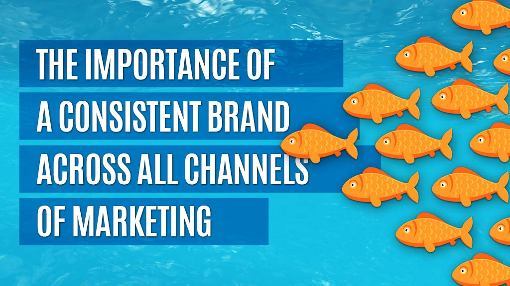 A school of fish that represents brand consistency.